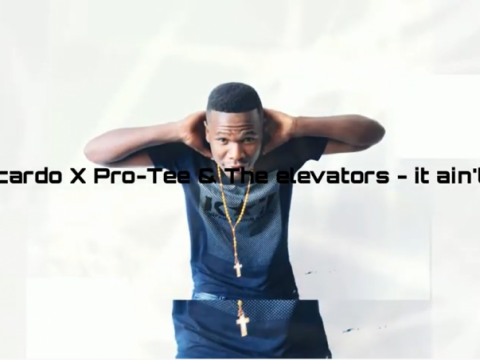 download - DJ Sbucardo, Pro-Tee & The Elevators - It ain