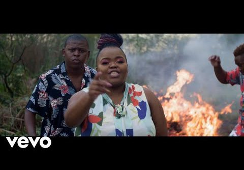 VIDEO: Distruction Boyz – Ubumnandi Ft. Nokwazi, DJ Tira | Mp4 Download