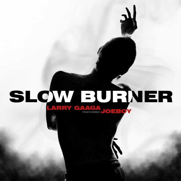 Larry Gaaga Slow Burner