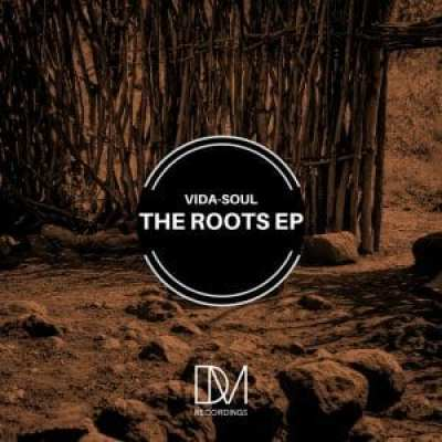 Vida-Soul The Roots Ep Download