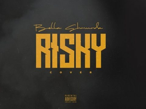 Bella Shmurda - Risky (Cover) Free Mp3 Download