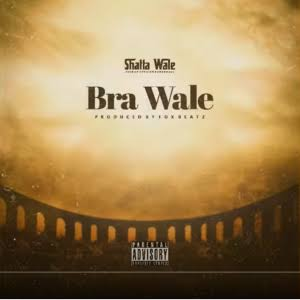 Shatta Wale - Drive By mp3